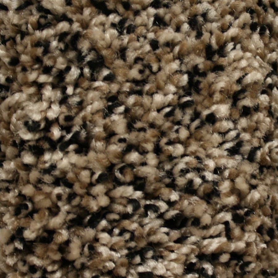 STAINMASTER Essentials Valmeyer Kingswood Carpet Sample