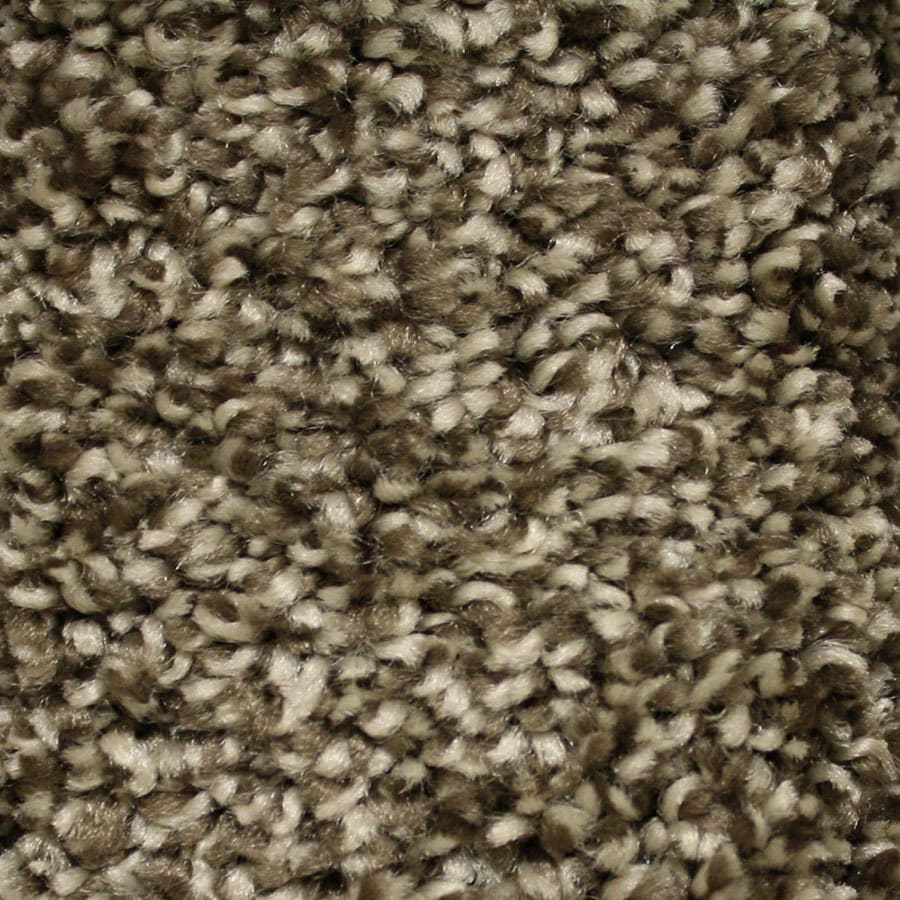 STAINMASTER Essentials Summer Platform Carpet Sample