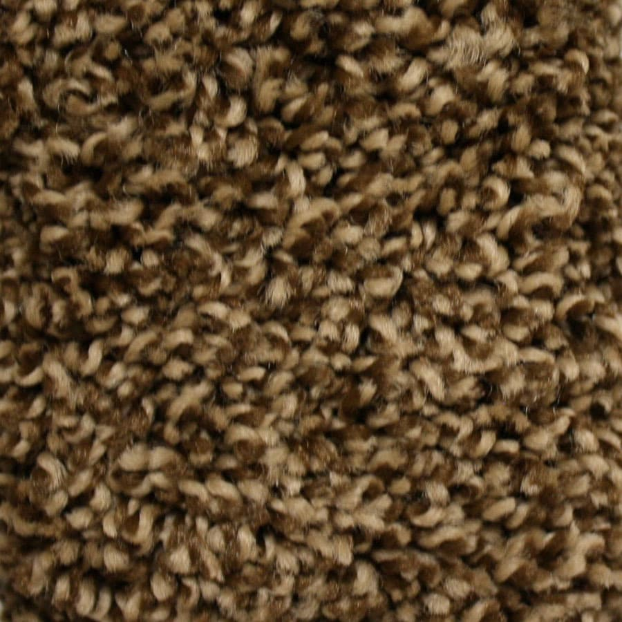 STAINMASTER Essentials Summer Old English Carpet Sample At