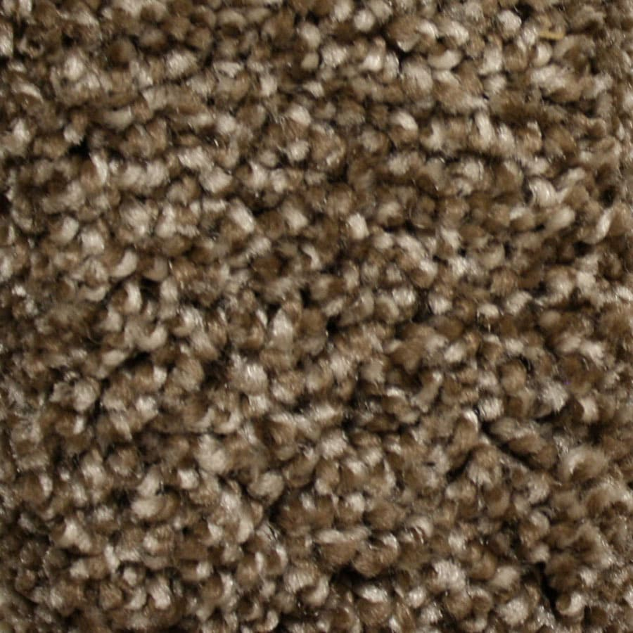 STAINMASTER Essentials Summer Peak Time Carpet Sample