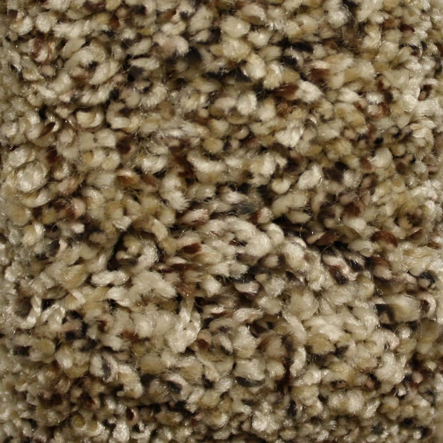 STAINMASTER Essentials Summer Hillside Plush Carpet Sample