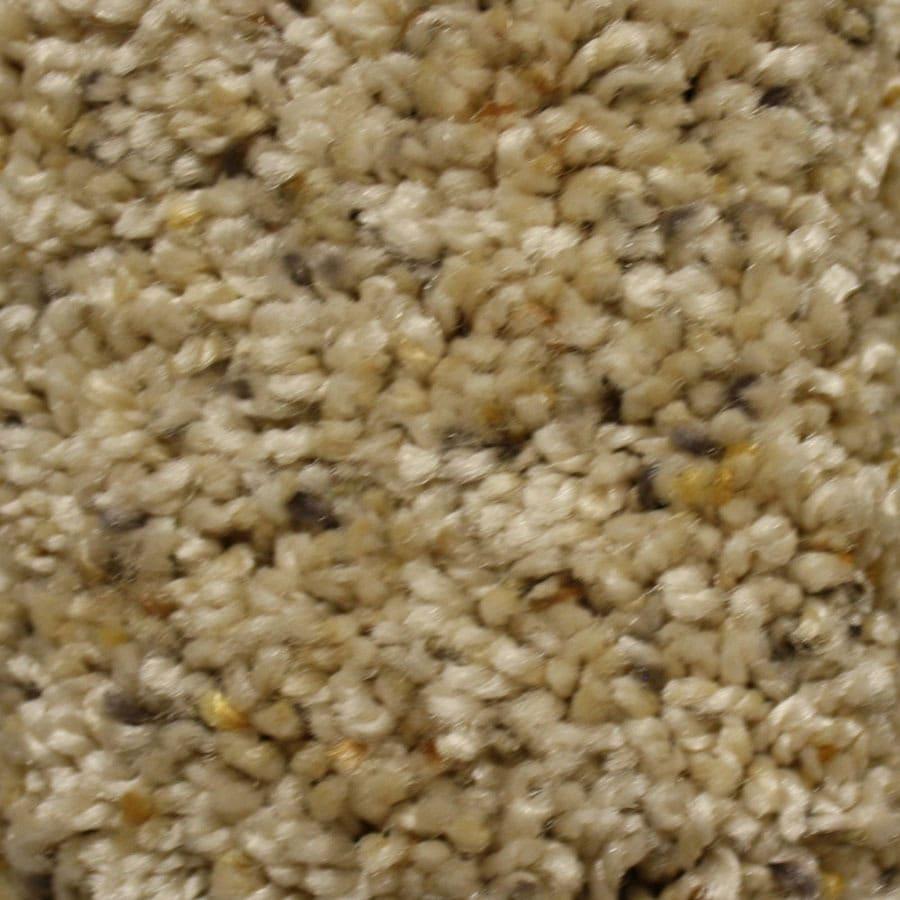 STAINMASTER Summer Essentials Key Role Plus Carpet Sample