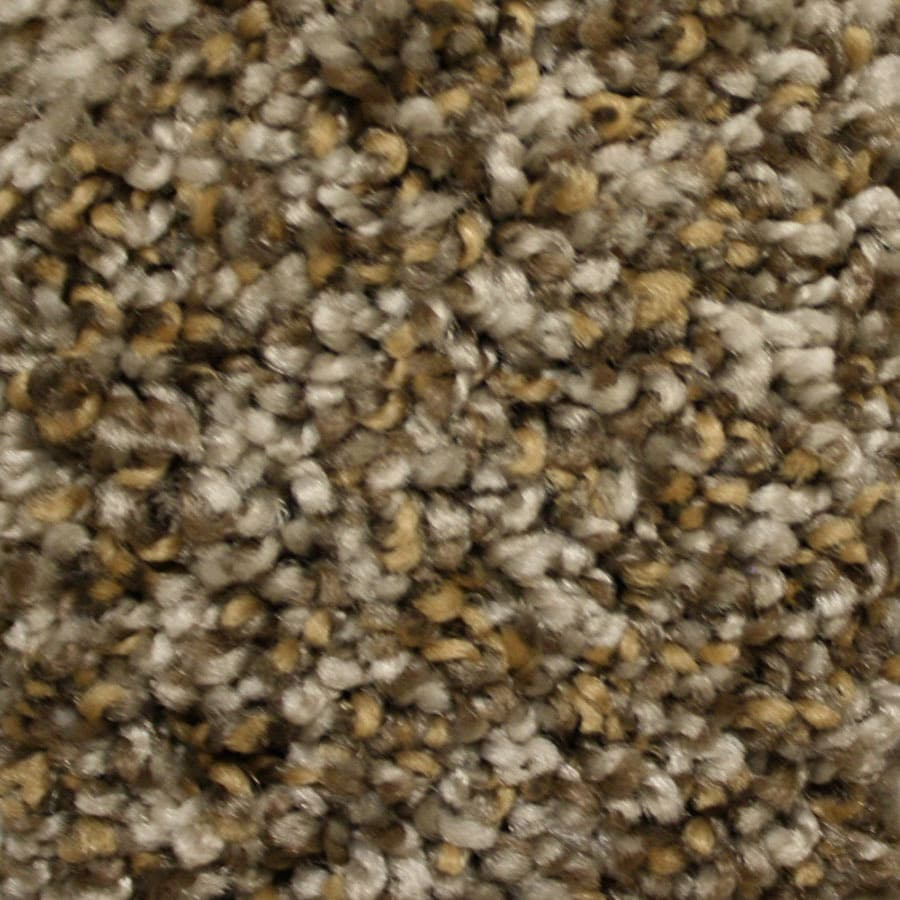 STAINMASTER Essentials Summer Modern Way Plush Carpet Sample