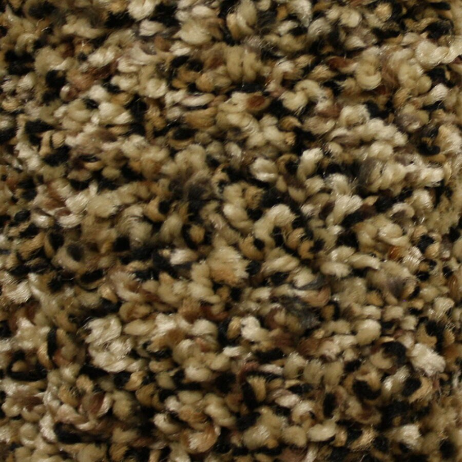 STAINMASTER Summer Essentials Freedom Pass Plush Carpet Sample