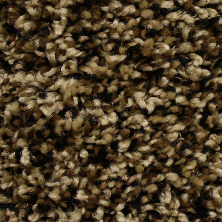 STAINMASTER Summer Essentials Abbeywood Plush Carpet Sample