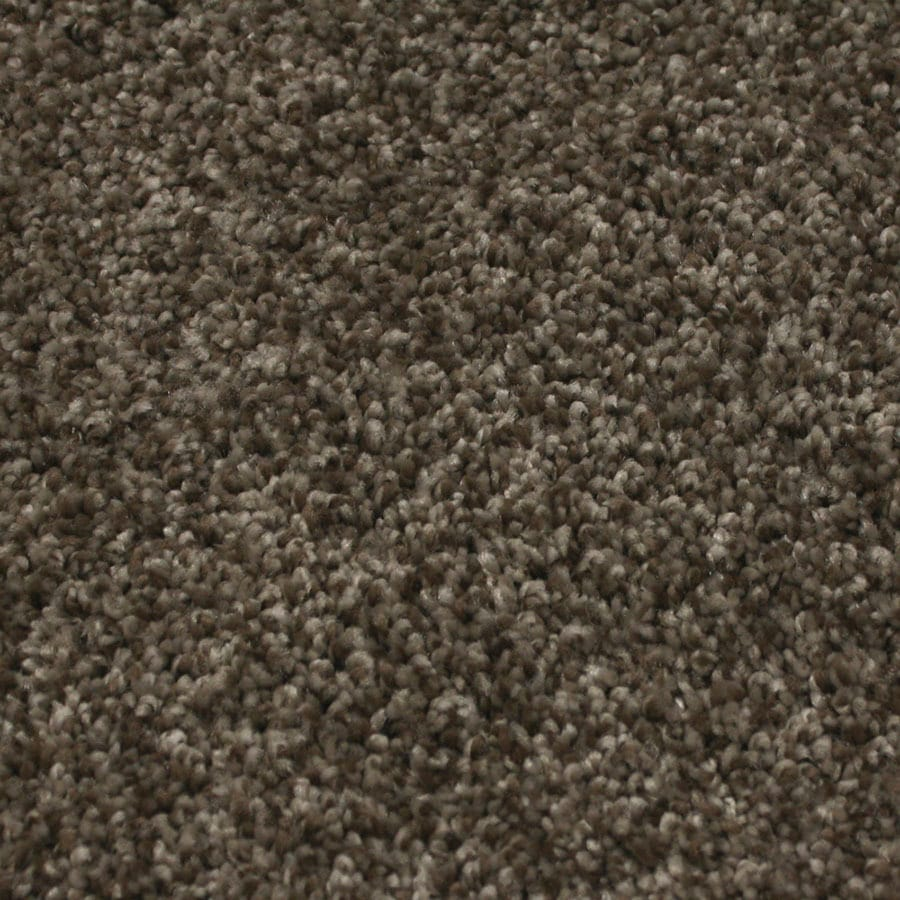 STAINMASTER Essentials Nolin Dusty taupe Carpet Sample