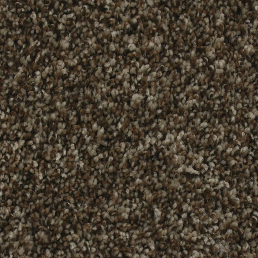 STAINMASTER Essentials Nolin Sand storm Carpet Sample