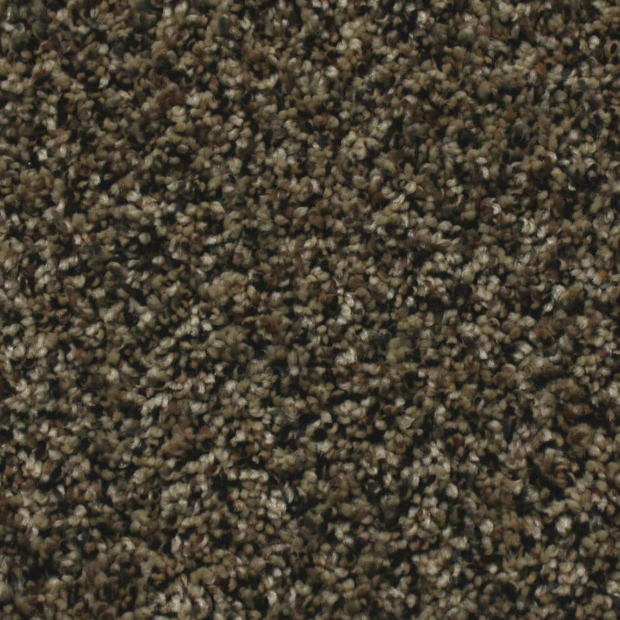 STAINMASTER Essentials Nolin Brazil Nut Plush Carpet Sample