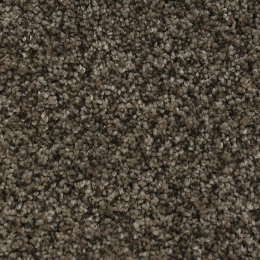 STAINMASTER Essentials Nolin Tender Tan Plush Carpet Sample