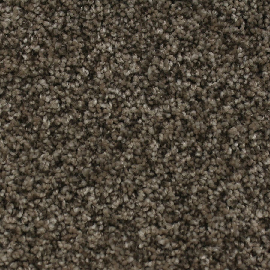 STAINMASTER Nolin Essentials Tender Tan Plus Carpet Sample