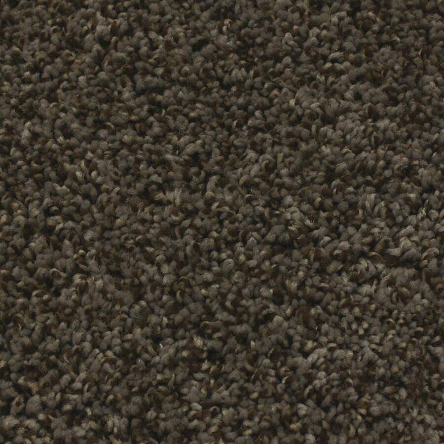 STAINMASTER Essentials Nolin Twilight Plush Carpet Sample