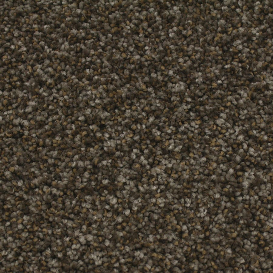 STAINMASTER Nolin Essentials Majestic Plus Carpet Sample
