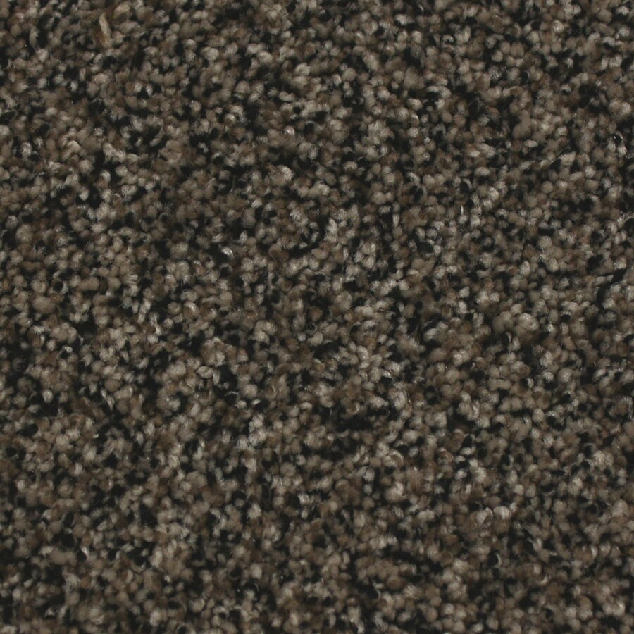 STAINMASTER Essentials Nolin Fur coat Carpet Sample