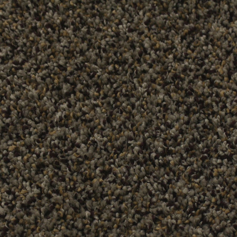 STAINMASTER Essentials Nolin Foxy Carpet Sample