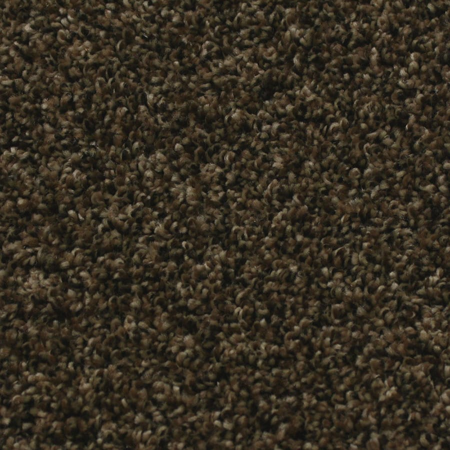 STAINMASTER Essentials Nolin-millstone Carpet Sample