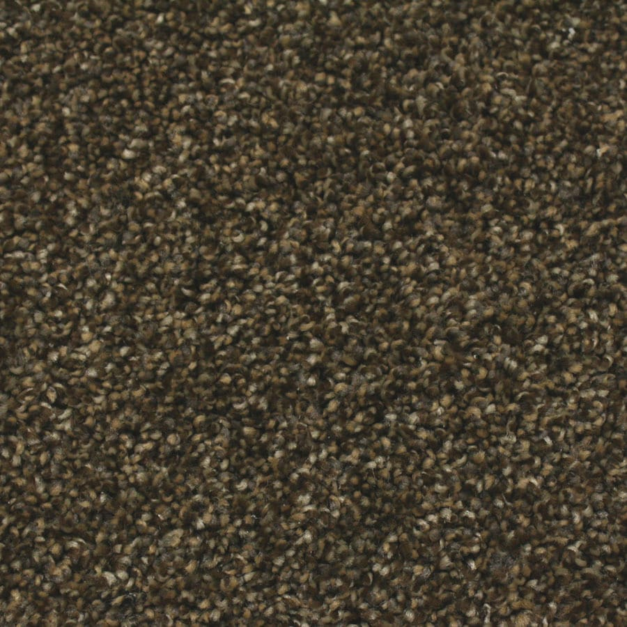 STAINMASTER Essentials Nolin Prairie Plush Carpet Sample
