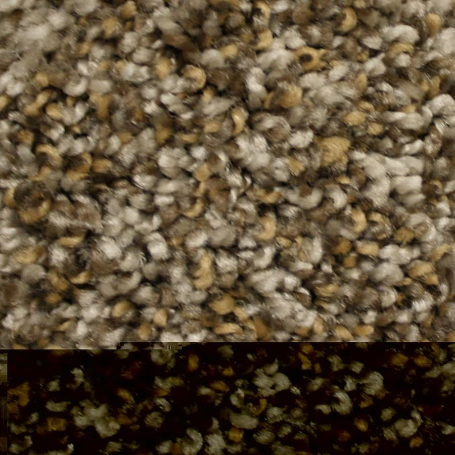STAINMASTER Summer Express Essentials Modern Way Plus Carpet Sample