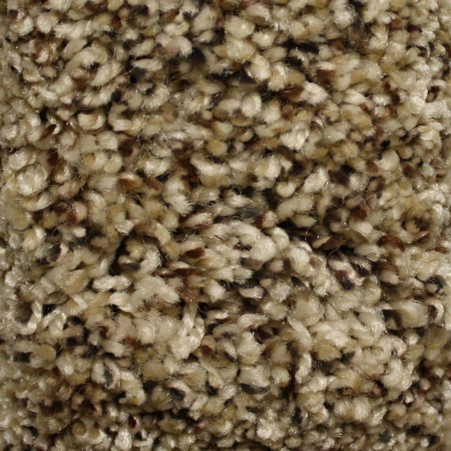 STAINMASTER Essentials Valmeyer Express Hillside Plush Carpet Sample