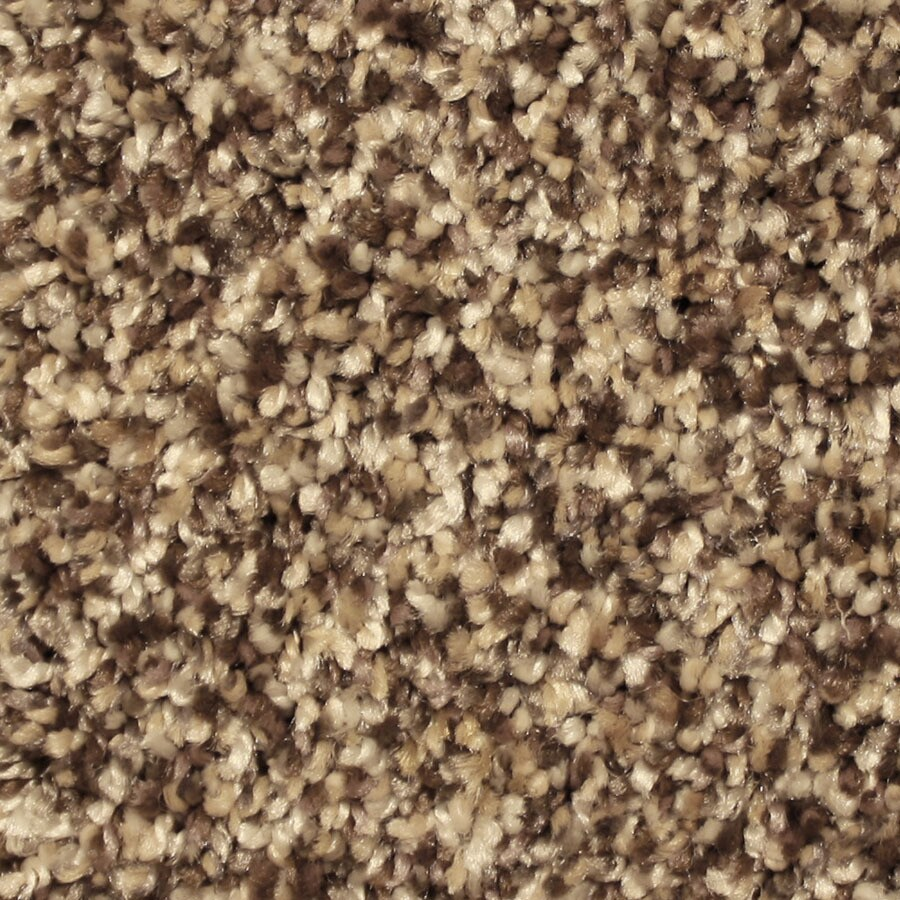 STAINMASTER Essentials Sonora Lovely Setting Carpet Sample