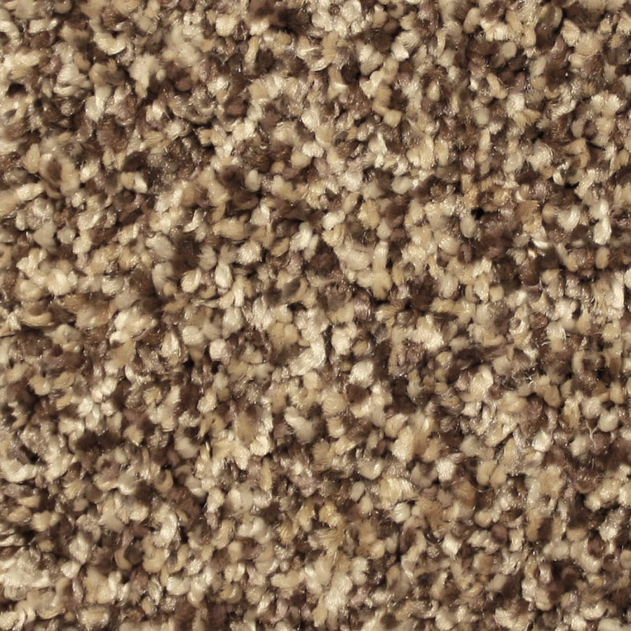 STAINMASTER Sonora Essentials Lovely Setting Plush Carpet Sample