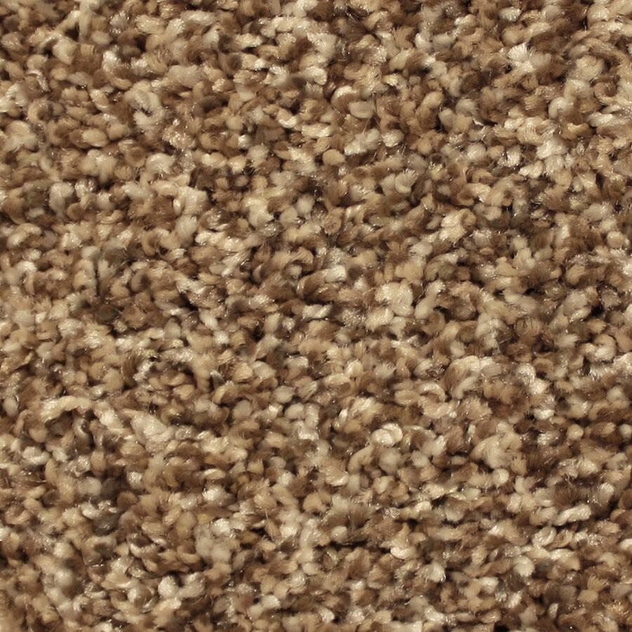STAINMASTER Essentials Sonora Historic Charm Plush Carpet Sample