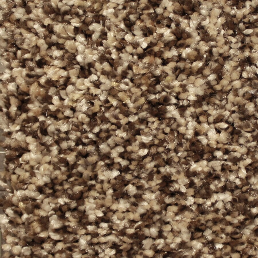 STAINMASTER Essentials Sonora Spotlight Carpet Sample