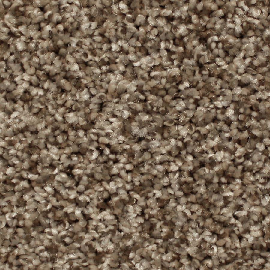 STAINMASTER Essentials Sonora Foothills Plush Carpet Sample
