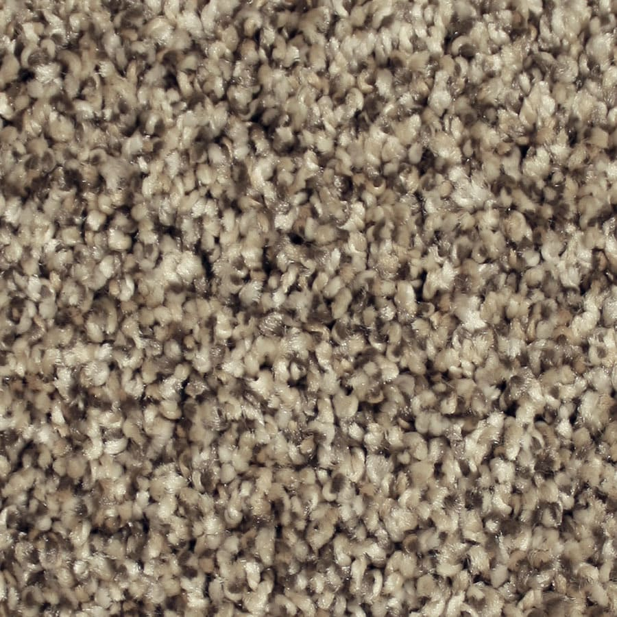 STAINMASTER Sonora Essentials Harbor Cove Plush Carpet Sample