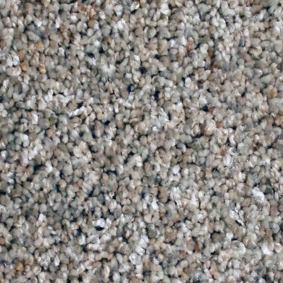 STAINMASTER Sonora Essentials Cavern Point Plush Carpet Sample