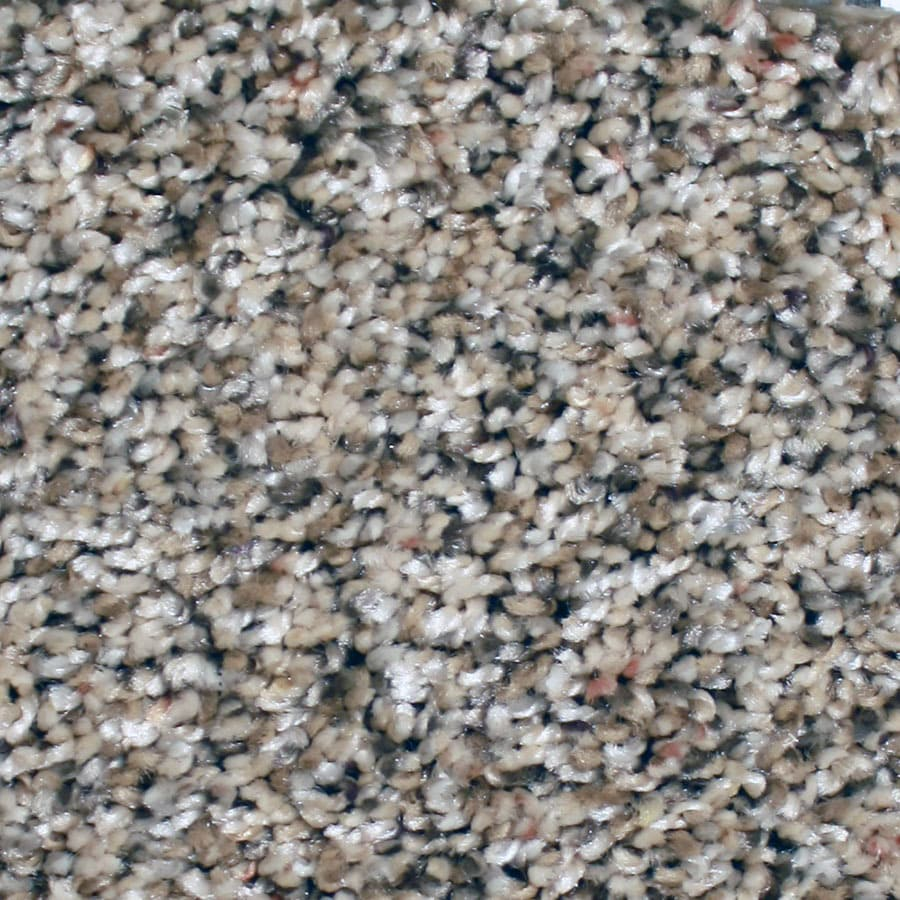 STAINMASTER Essentials Sonora Fun Fusion Plush Carpet Sample