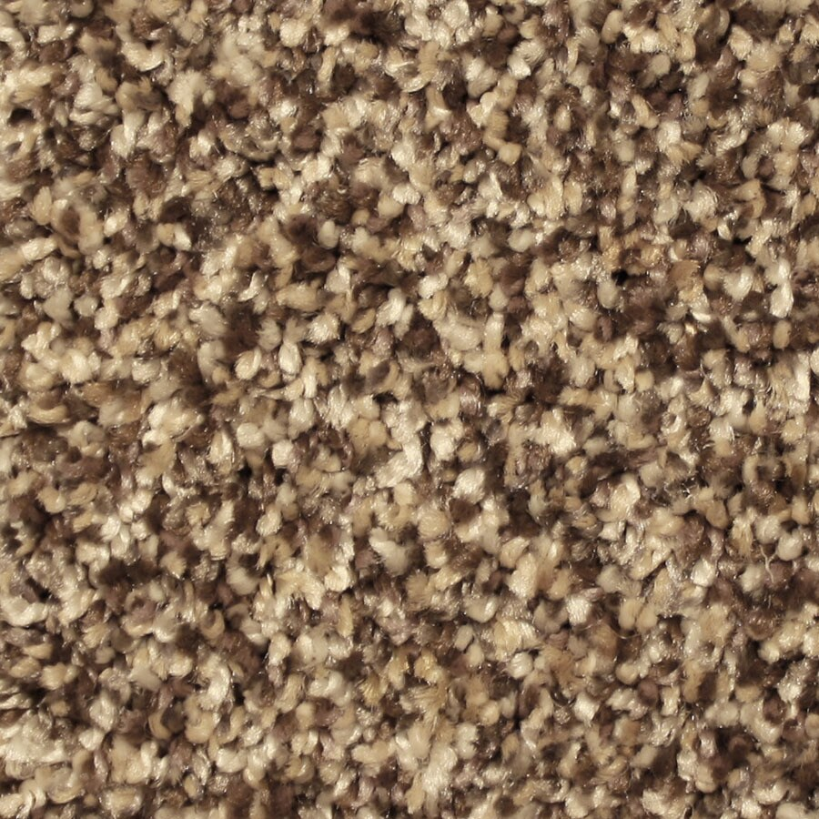 STAINMASTER Essentials Channing Lovely Setting Carpet Sample
