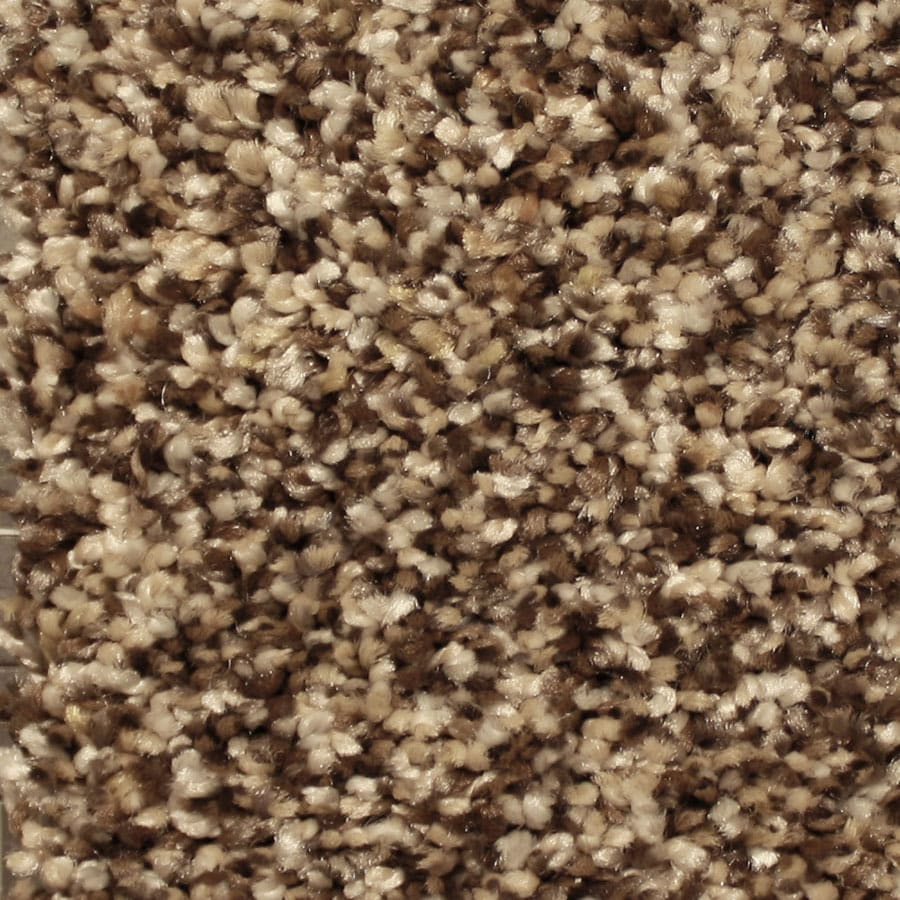 STAINMASTER Channing Essentials Spotlight Plus Carpet Sample