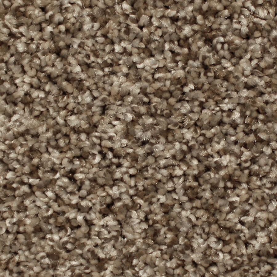 STAINMASTER Channing Essentials Foothills Plush Carpet Sample