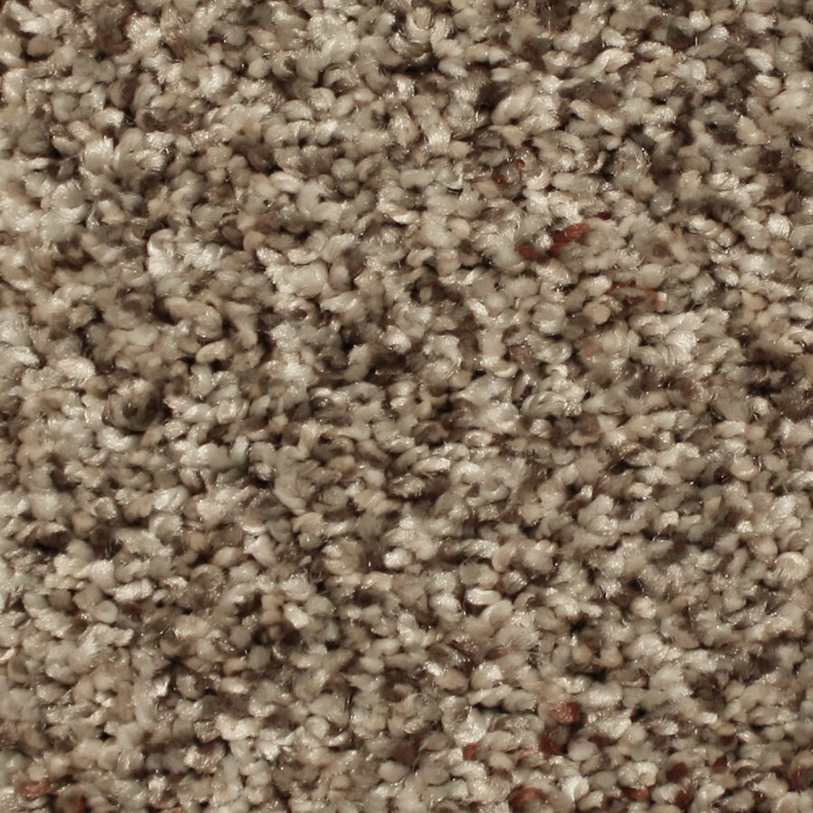 STAINMASTER Channing Essentials Vibrant Town Plush Carpet Sample