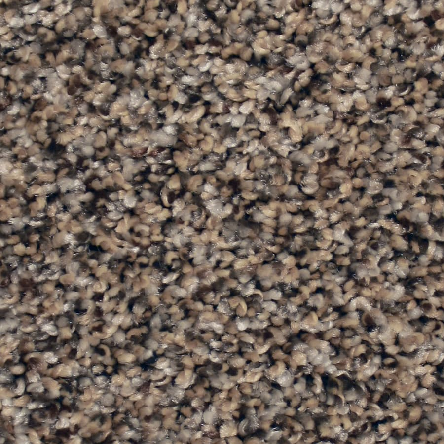 STAINMASTER Essentials Channing Lazy Stroll Carpet Sample