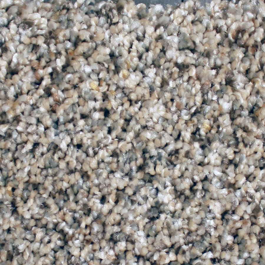 STAINMASTER Channing Essentials Rock Hop Plush Carpet Sample