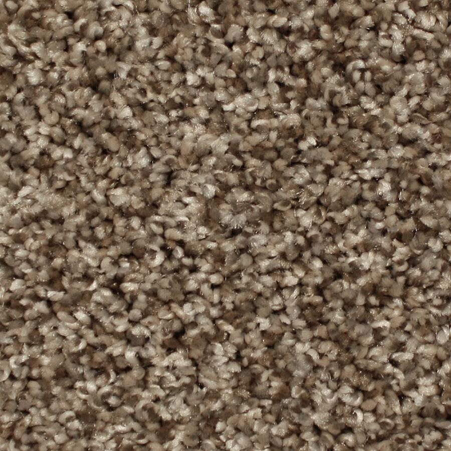 STAINMASTER Essentials Ventura Foothills Carpet Sample