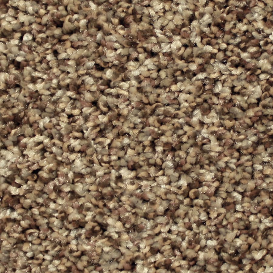 STAINMASTER Essentials Ventura Good Fortune Plush Carpet Sample