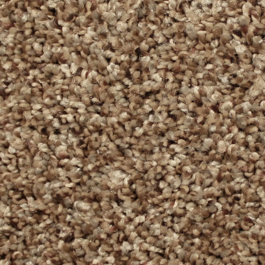 STAINMASTER Ventura Essentials Casual Soul Plush Carpet Sample
