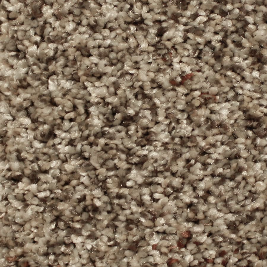 STAINMASTER Ventura Essentials Vibrant Town Plus Carpet Sample