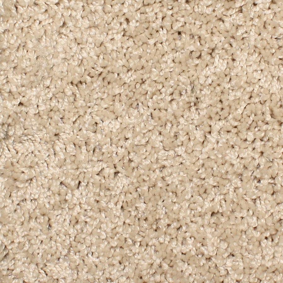STAINMASTER Bronson Essentials Sand Trap Plus Carpet Sample