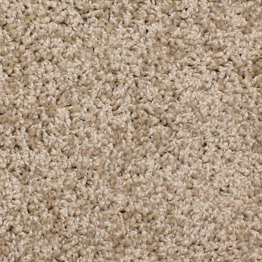 STAINMASTER Essentials Bronson Terrain Carpet Sample
