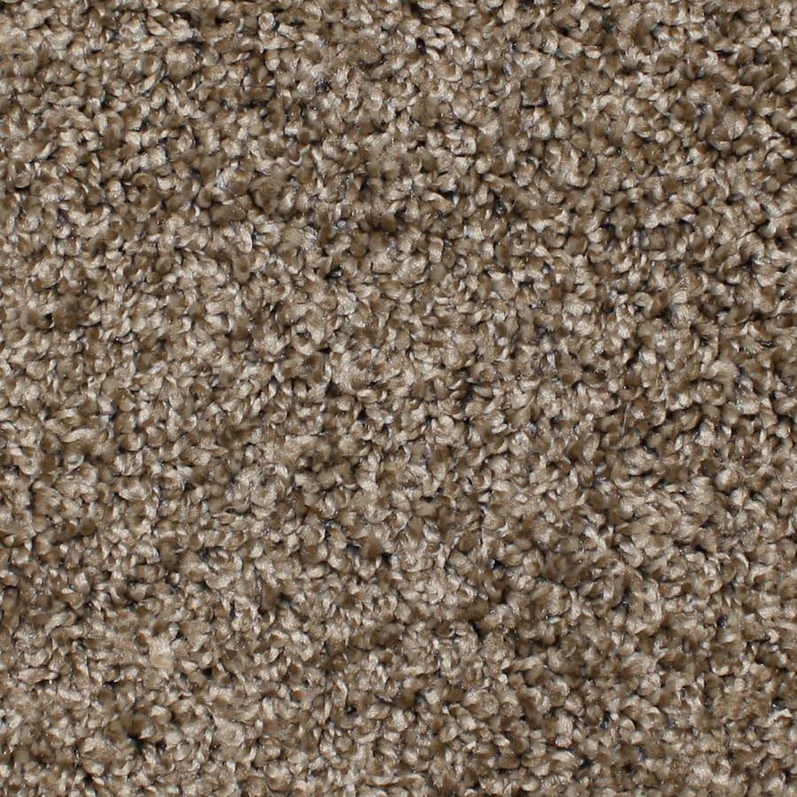 STAINMASTER Bronson Essentials Desert Wildlife Plush Carpet Sample