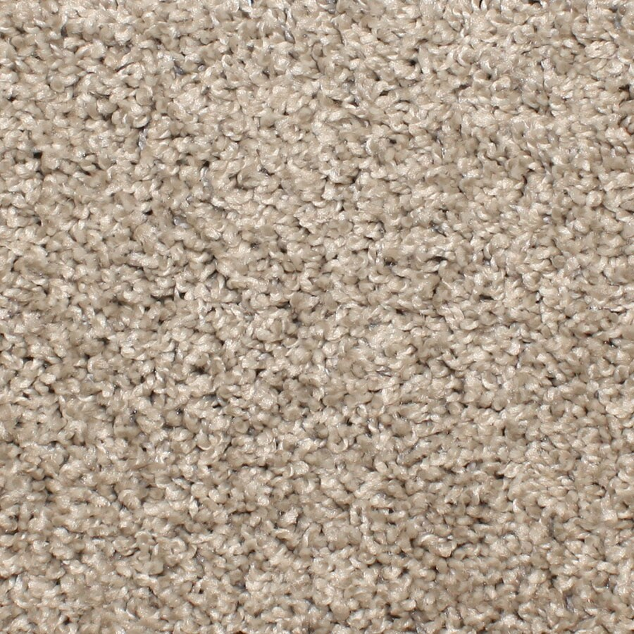 STAINMASTER Bronson Essentials Cobblestone Plush Carpet Sample