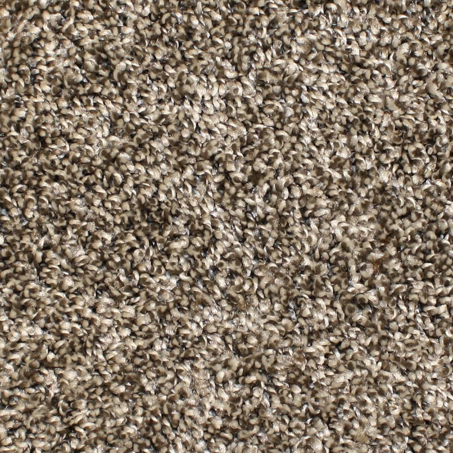 STAINMASTER Essentials Bronson Playtime Plush Carpet Sample
