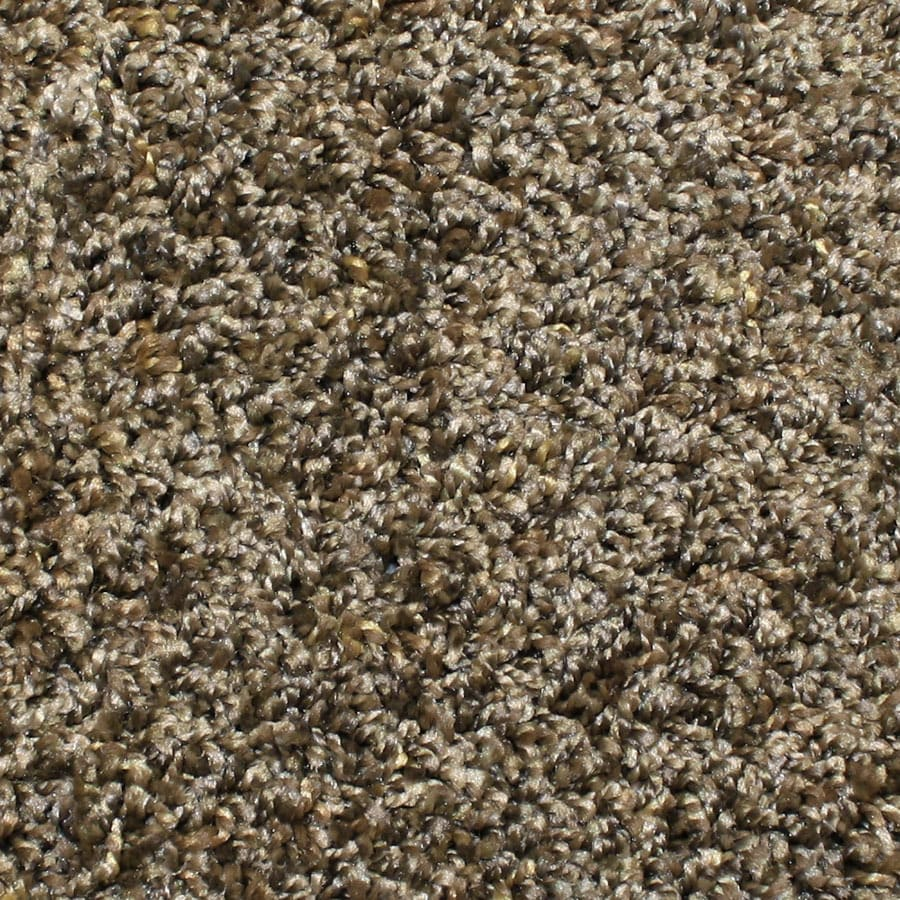 STAINMASTER Bronson Essentials Rolling Hills Plush Carpet Sample