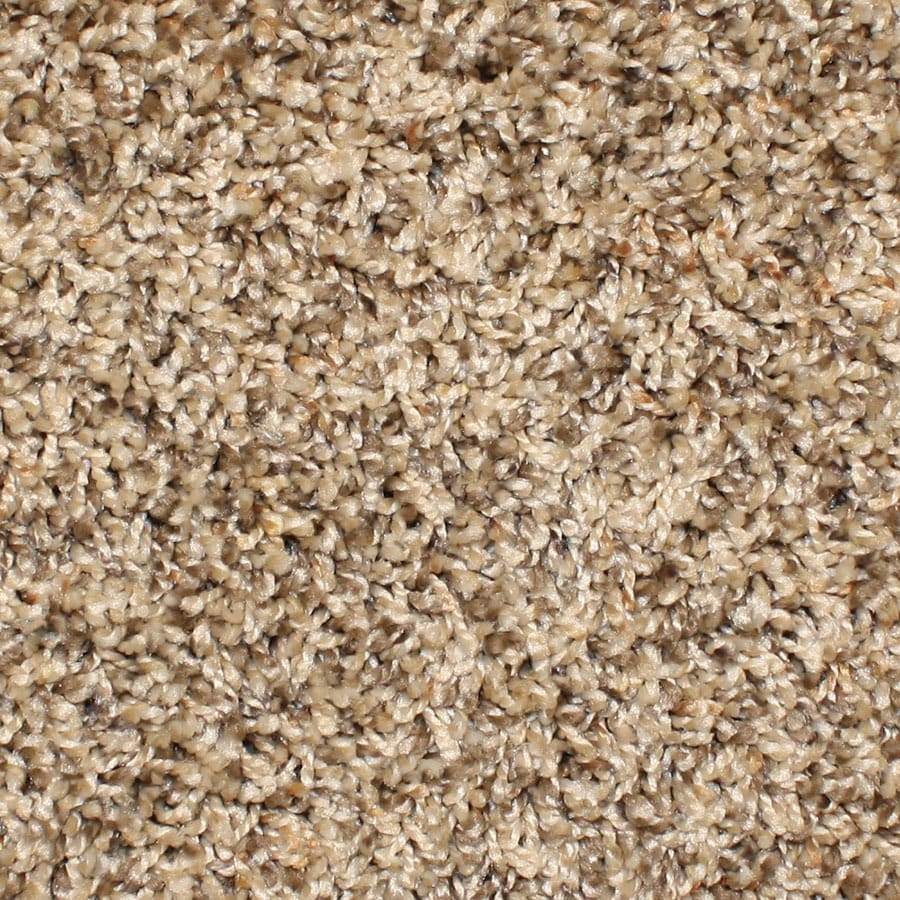 STAINMASTER Essentials Conway Rave Review Plush Carpet Sample