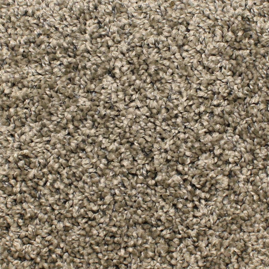 STAINMASTER Conway Essentials Gray Day Plush Carpet Sample
