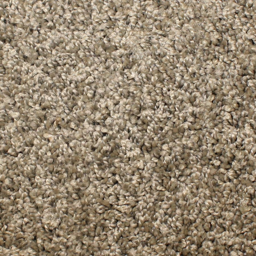 STAINMASTER Conway Essentials Painted Dunes Plush Carpet Sample