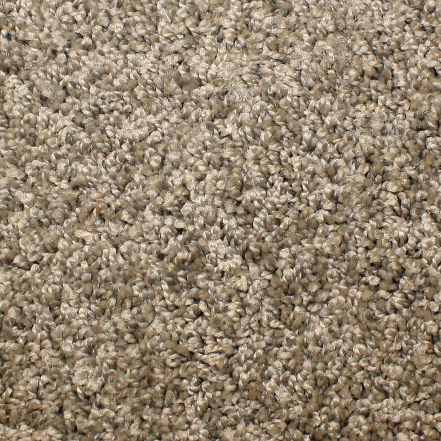 STAINMASTER Conway Essentials Painted Dunes Plus Carpet Sample